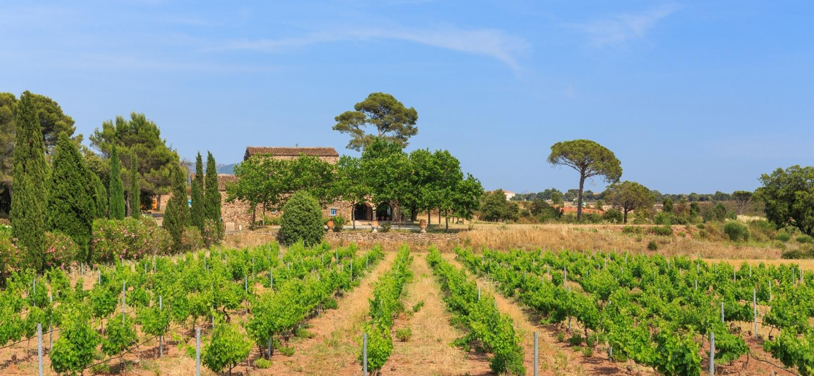 couverture domaine viticole