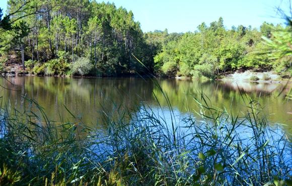 pays de fayence - saint-paul-en-foret lac