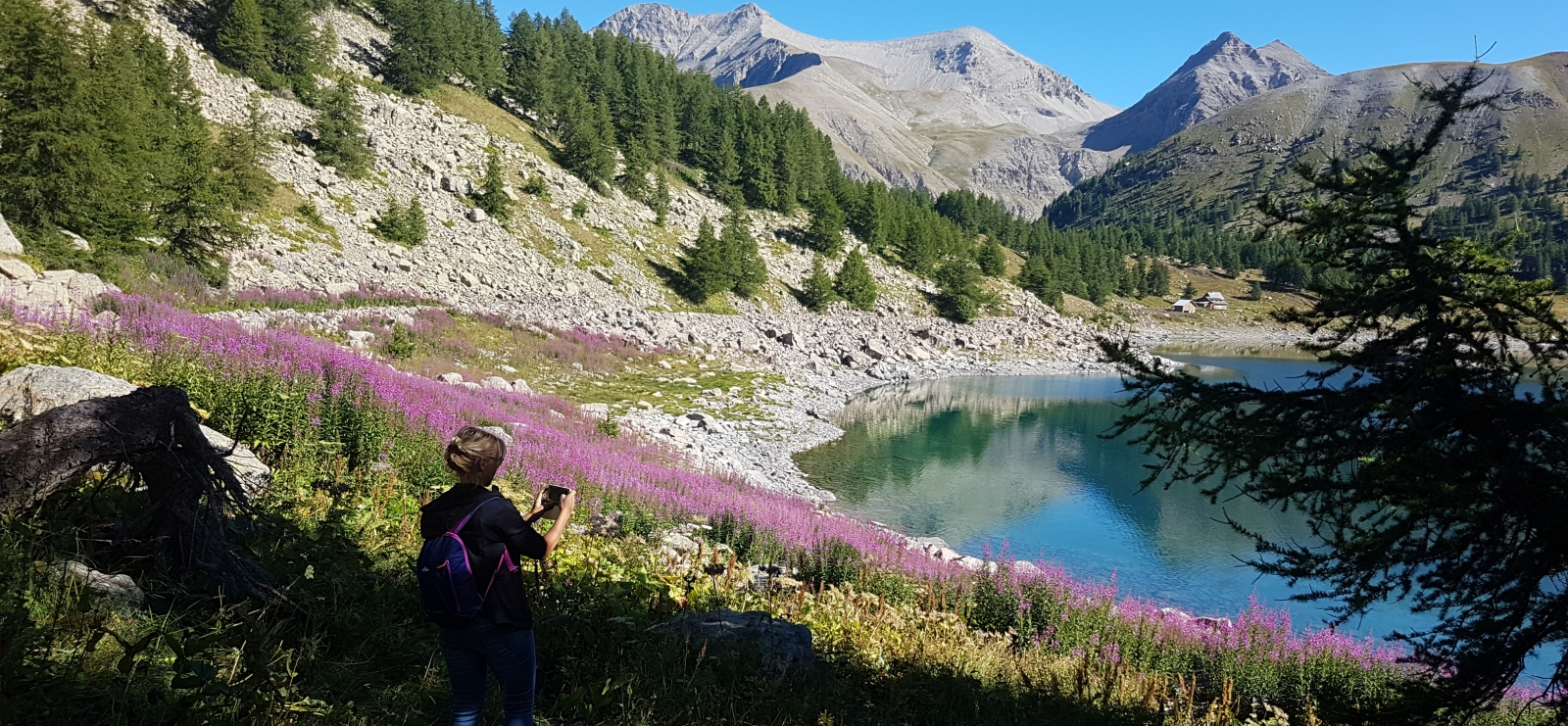 Rando terres d'Azur Lac d'Allos