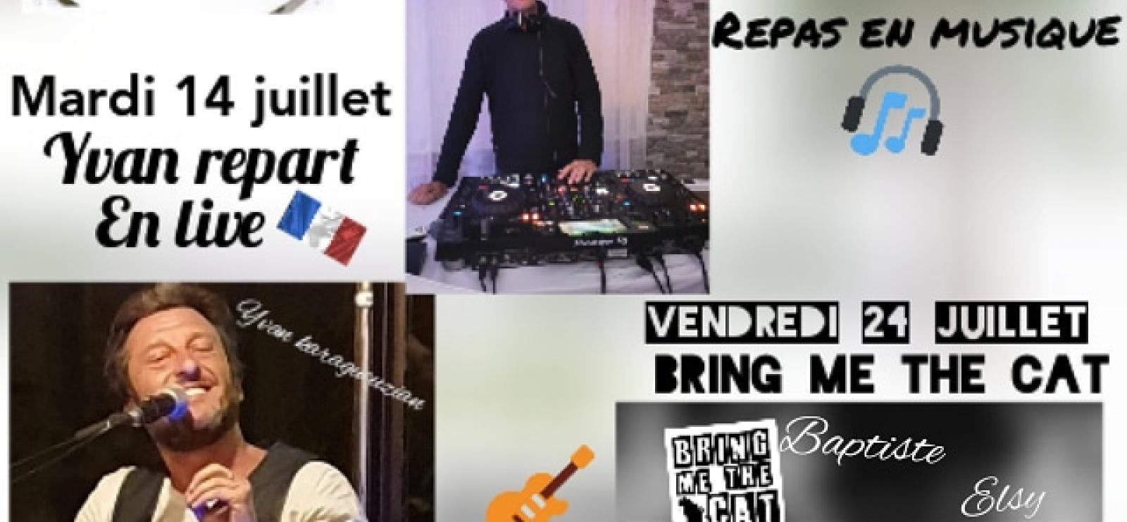 Soirées Music Live