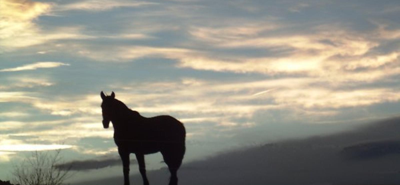 Coucher de soleil La Cavale