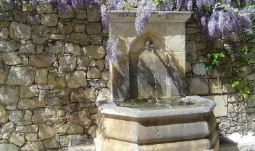 fontaine et glycine