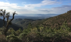Trail - Trail Hermès Estérel (10km)