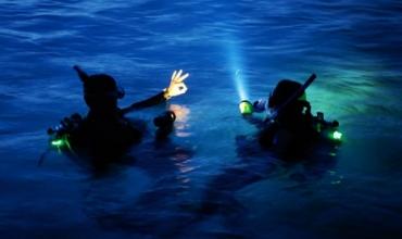 Plongée Nuit niveau 1 à Port-Fréjus