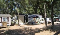 Emplacement Mobile Home