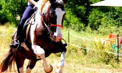 A cheval