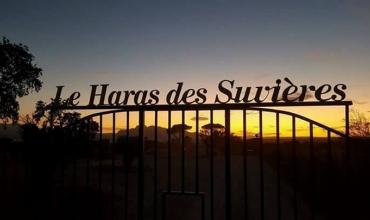 Le Haras des Suvières