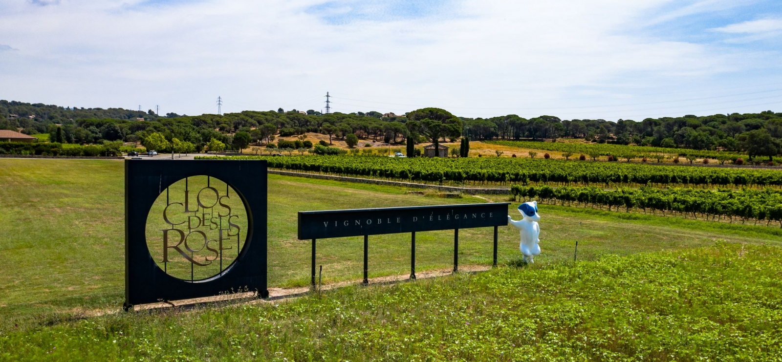 Les secrets des vins de Provence