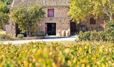 Visites des domaines viticoles pugétois