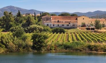 Saveurs de notre Provence
