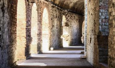 Visite guidée 'Forum Iulli, colonie romaine, la Pompéi provençale'