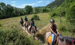 Balade a cheval ' 1/2 journée à la cool'