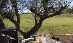 Brasserie Tee Time (democratic golf)