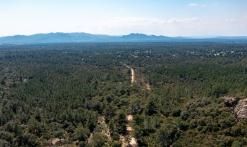 Randonnée - Sentier des Meulières