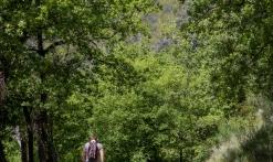 Randonnée - Le Vallon de la Camandre
