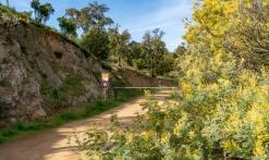 Randonnée : Sentier du mimosa - Vallon de la Gaillarde