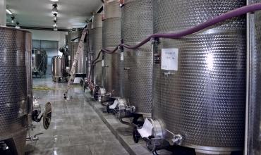 Domaine viticole La Grande Bastide