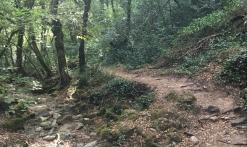 Bagnols-en-Forêt