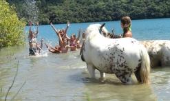 Balade équestre 'Baignade' lac St Cassien