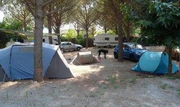 Camping à la ferme Michel