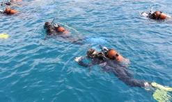 Baptême de plongée et initiation Basic Diver