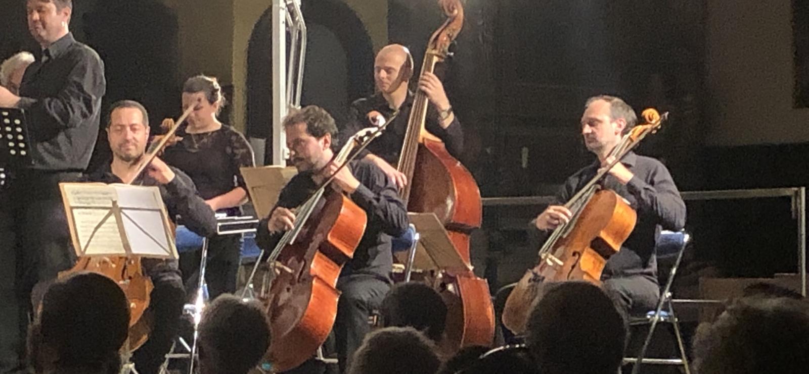 festival Cellofan