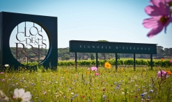 Groupe_patrimoine_vestiges_romains_vins-provence