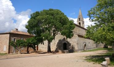 Abbaye du Thoronet, Joyaux de l'architecture cistercienne
