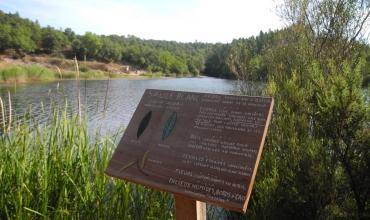 Lac du Rioutard