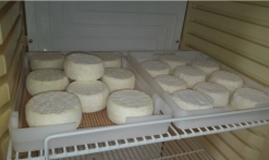 fromages fraisf