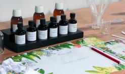 Fragonard Perfumery - Usine des Fleurs factory