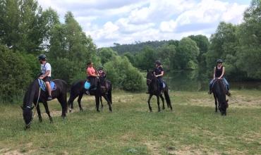 Journée détente à cheval/poney