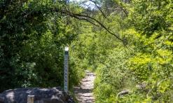 Randonnée - Découverte du Biotope de Fondurane