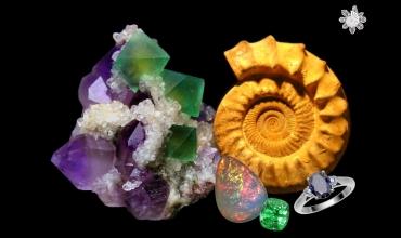 Salon Mineral Event