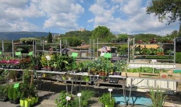 Jardin d'Automne - Fête des Plantes